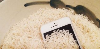 Celular en arroz